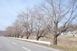 県道152号線
